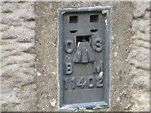 NY9179 : Ordnance Survey Flush Bracket 11402 by Peter Wood