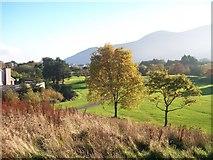 J3731 : Autumn colours in Islands Park by Eric Jones