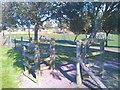 NO5603 : Play park by James Allan