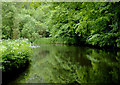 SO8379 : Canal north-east of Wolverley, Worcestershire by Roger  Kidd