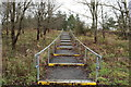 NS3518 : Steps on Path to The Ayr Hospital by Billy McCrorie