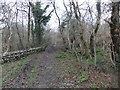 SD5477 : Pickles Wood by David Brown