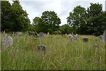 TQ4111 : Overgrown graveyard by N Chadwick