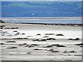 SH5536 : Shifting sands on Black Rock Sands by John Lucas