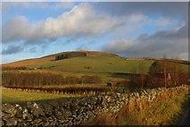 NT4437 : Farmland above Clovenfords by Alan Reid