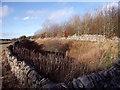 SK1364 : Ramp to a former farm access by Ian Calderwood