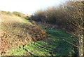 ST1999 : Bridleway above Yard Coal Rise, B4251 by M J Roscoe