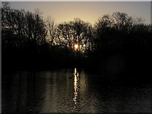 SE2034 : Dusk over Woodhall Lake by Stephen Craven