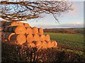 NZ1165 : Straw bales near High Close House by Andrew Curtis