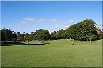 TQ2636 : Goffs Park (7) by Barry Shimmon