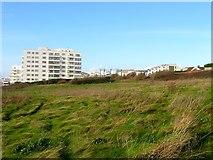 TQ3303 : Open Ground, Black Rock, Brighton by Simon Carey