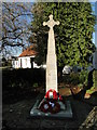 TG2917 : Wroxham War Memorial by Adrian S Pye