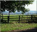 SK5948 : Ramsdale Park Golf Course, Calverton, Notts. by David Hallam-Jones