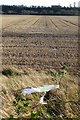 SK5435 : Stubble field with carrier bag by David Lally