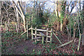 SP8602 : Stile into the woods by Des Blenkinsopp