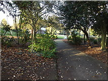 TM1645 : Path in Christchurch Park by Adrian Cable