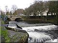 SX4874 : River Tavy, Tavistock by Chris Allen