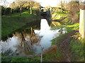 SU0399 : Siddington locks and bridge, Thames and Severn Canal by Vieve Forward