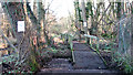 TG4010 : Footpath in Damgate Wood by Evelyn Simak