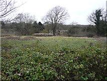 TR3051 : Danefield House, St Mary's Grove by John Baker