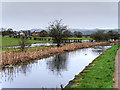 SD7808 : New Year's Day 2016, Manchester, Bolton and Bury Canal by David Dixon