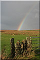 NY8385 : Rainbow over Ewe Hill by Anne Burgess