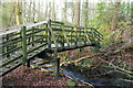 NX0980 : Footbridge over the Smyrton Burn by Billy McCrorie