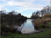 TQ2979 : Lake in St. James' Park by PAUL FARMER