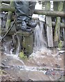 SE3200 : A very wet stile! by Dave Pickersgill