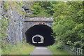SK1273 : Chee Tor No.2 Tunnel western portal by N Chadwick