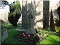 TG3010 : Little Plumstead WW1 War Memorial by Adrian S Pye