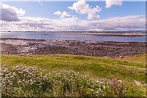 NU1341 : Towards Ross Back Sands by Ian Capper