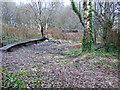 NS2975 : Old railway bridge by Thomas Nugent