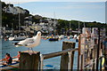 SX2553 : Looe - by the fish-and-chip shop by Oliver Mills