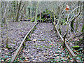 NS2975 : Former James Watt Dock railway line by Thomas Nugent
