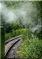 SJ9854 : Railway line east of Leekbrook Junction, Staffordshire by Roger  Kidd