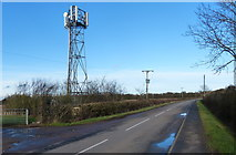 SK6117 : Mobile phone mast along Seagrave Road by Mat Fascione