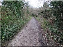 TQ1752 : Bridleway up Juniper Bottom by Hugh Venables