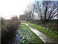 TA1843 : Hornsea Rail Trail near Rowlings Farm by JThomas