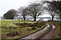 SO1802 : Ebbw Valley Walk on a track to Manmoel by M J Roscoe