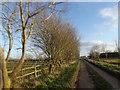 TL6273 : Moor Road (Fordham Moor), Fordham by Adrian Cable