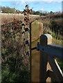 SX9066 : Fence, Nightingale Park by Derek Harper