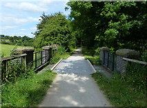 SK1751 : Bridge along the Tissington Trail by Mat Fascione