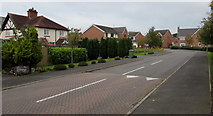 SJ5541 : East side of Mill Park, Whitchurch by Jaggery