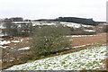 SX6075 : West Dart valley, Dartmoor by Alan Hunt