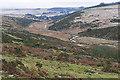 SX6176 : West Dart valley by Alan Hunt