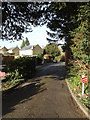 TL1713 : Old Rectory Gardens, Wheathampstead by Adrian Cable