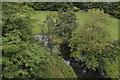 SK1871 : River Wye below the Headstone Viaduct by N Chadwick