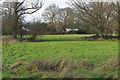 SU9960 : Bourne Meadows, Mimbridge by Alan Hunt