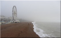 TQ3103 : View east along Brighton Beach by Gareth James